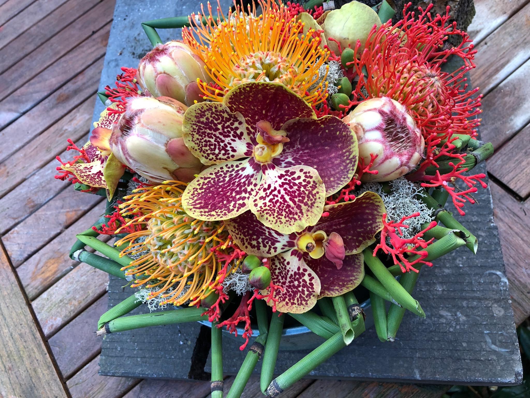 Montage bois pliés et orchidées